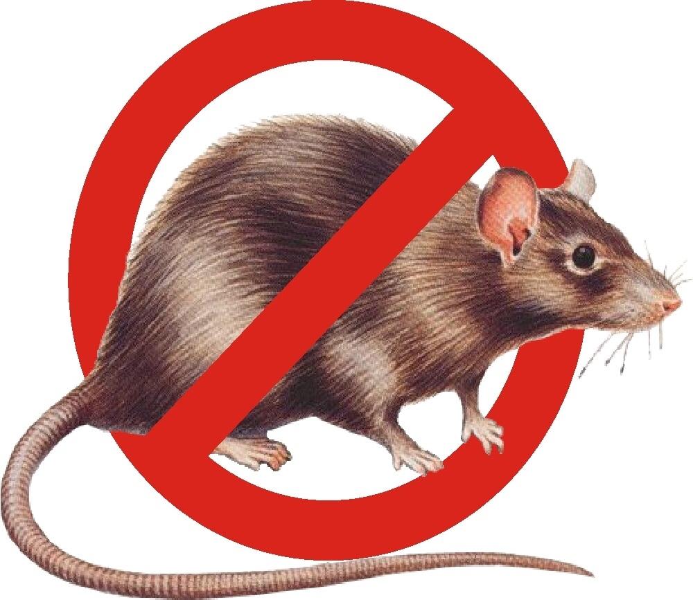 отпугиватель мышей и крыс