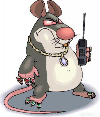 борьба с грызунами - как избавиться от крыс и мышей