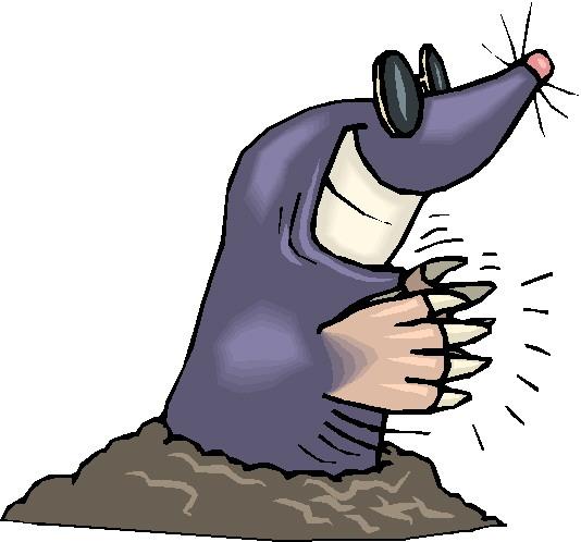 народные методы борьбы с глистами у человека